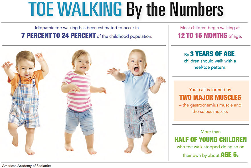 Toe Walkers by the Numbers